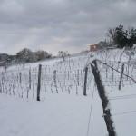 nevicata 09 b