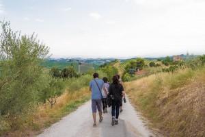 passeggiata guidata nelle campagne picene